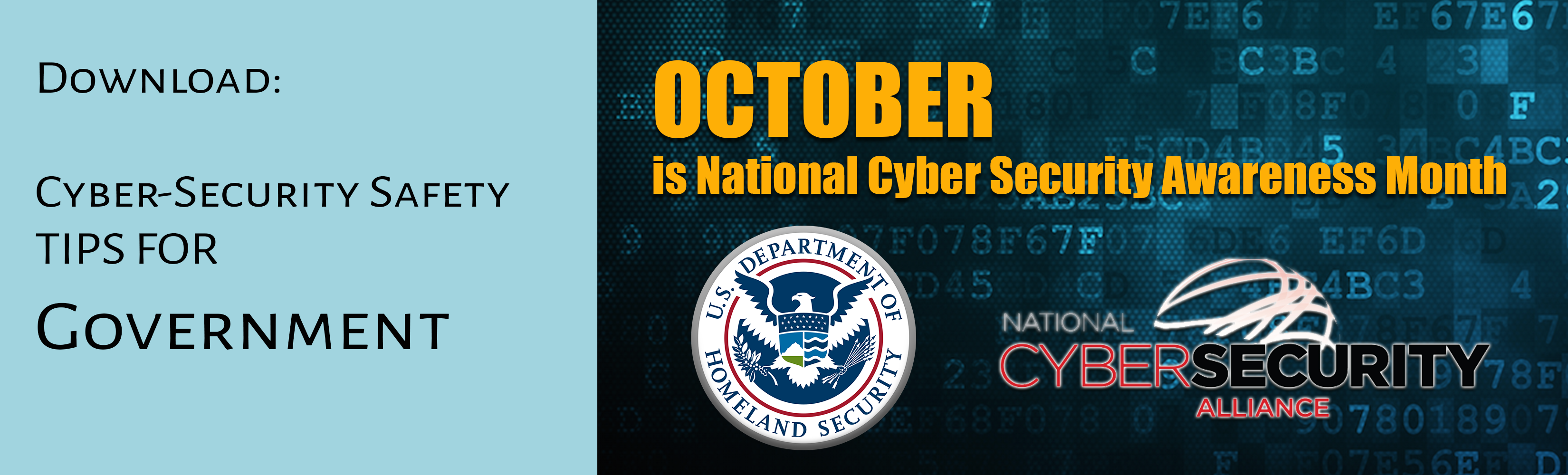 DHS_Tip Card_Government, cyber security